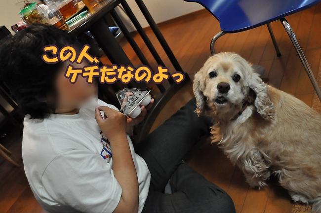 b0067012_10135341.jpg