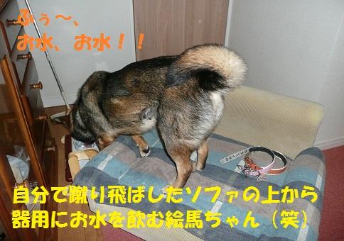 f0121712_23104539.jpg