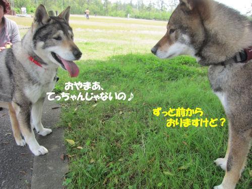 f0143123_20111677.jpg