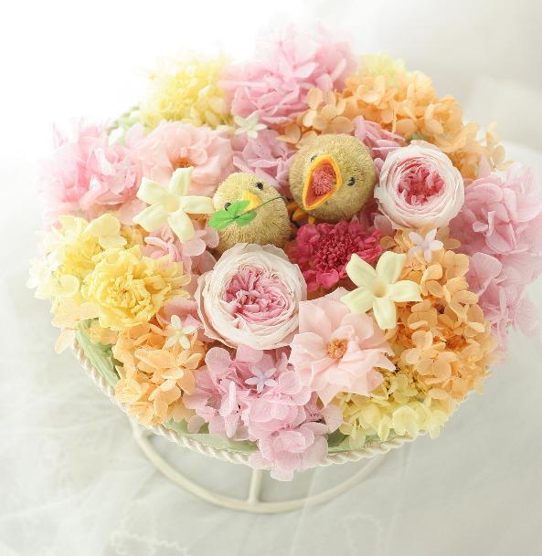 ご出産お祝いを届けにきました ひよこ_a0042928_0334467.jpg