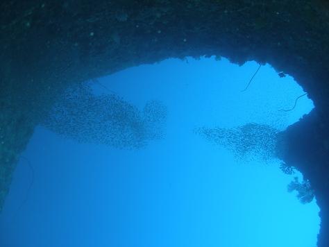 5月24日残波の洞窟に、青の洞窟♪_c0070933_2055111.jpg