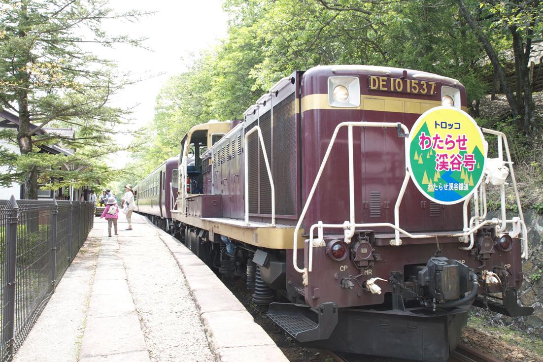 わたらせ渓谷鉄道 トロッコ列車1 足尾_e0127948_19135698.jpg