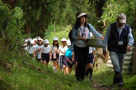 箱作小学校4年学習サポート          「田山川の水生生物観察」_c0108460_18164667.jpg