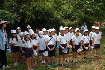 箱作小学校4年学習サポート          「田山川の水生生物観察」_c0108460_18185717.jpg