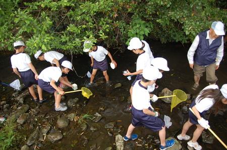 箱作小学校4年学習サポート          「田山川の水生生物観察」_c0108460_18221946.jpg