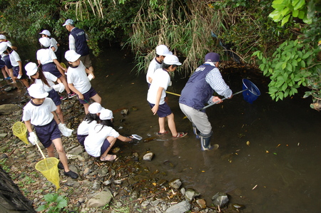箱作小学校4年学習サポート          「田山川の水生生物観察」_c0108460_18233211.jpg