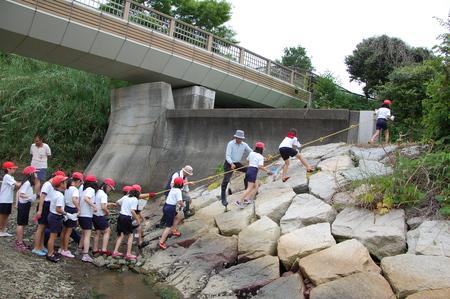 箱作小学校4年学習サポート          「田山川の水生生物観察」_c0108460_21135997.jpg