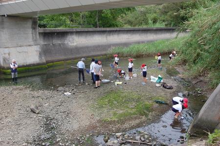箱作小学校4年学習サポート          「田山川の水生生物観察」_c0108460_2123232.jpg