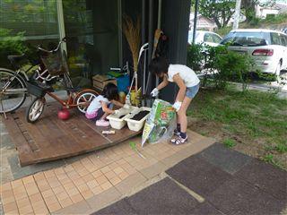 先日、子供たちと「ひまわり」のたねを植えました!_c0131666_22132040.jpg
