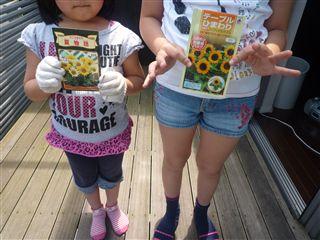 先日、子供たちと「ひまわり」のたねを植えました!_c0131666_2214455.jpg