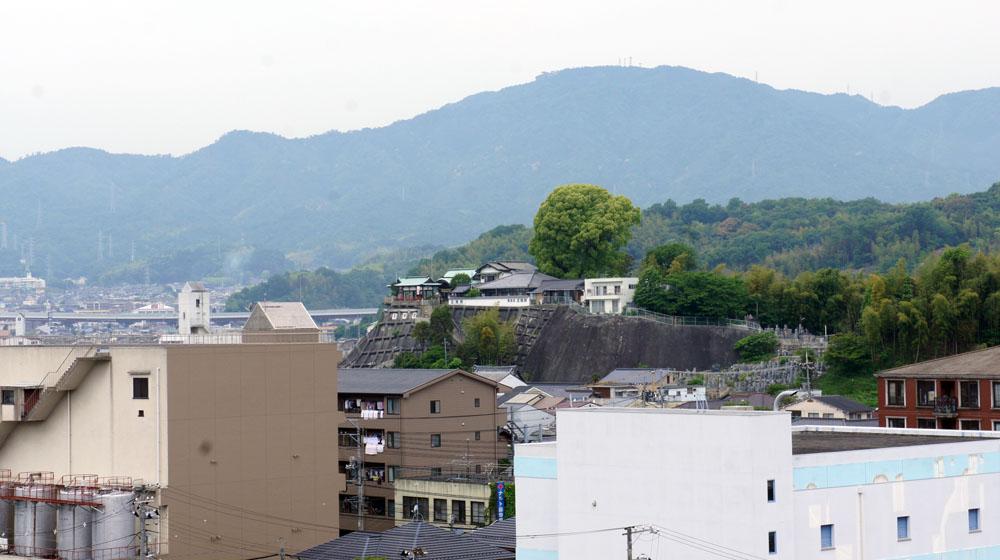 朝のお散歩_e0158970_1530137.jpg