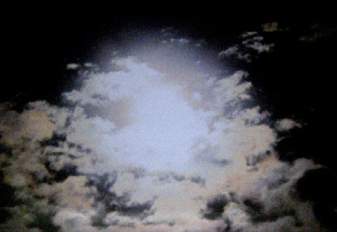 金環日食♪    _c0009275_0134177.jpg