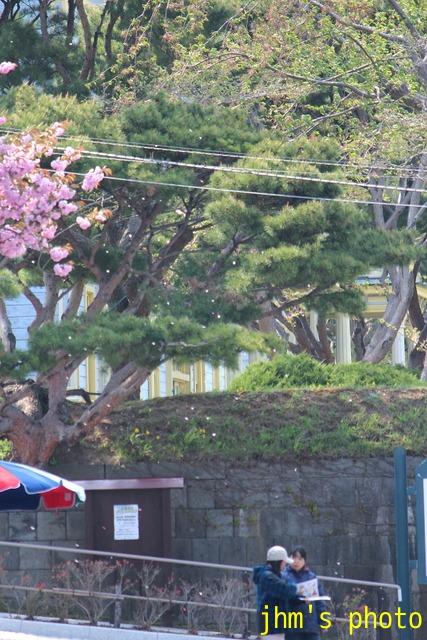 桜散る元町の散策と女神へのメッセージ_a0158797_23443291.jpg
