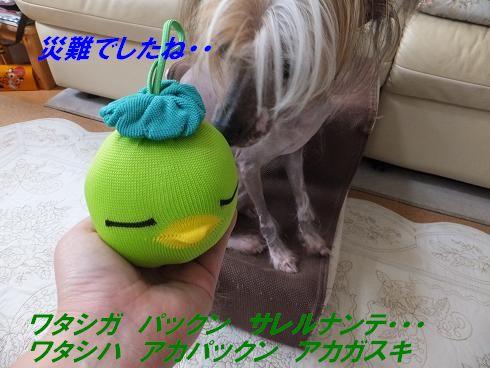 f0179203_15421967.jpg