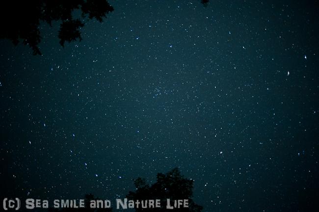 石垣島の星_a0155606_1614178.jpg