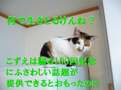 e0072606_14175956.jpg