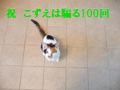 e0072606_1493361.jpg