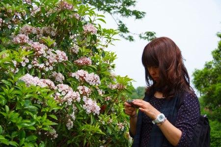 【フォトピクニックレポート】 昭和記念公園 5月20日_c0238457_14481676.jpg