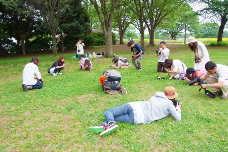【フォトピクニックレポート】 昭和記念公園 5月20日_c0238457_17112074.jpg