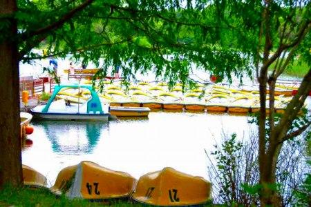 【フォトピクニックレポート】 昭和記念公園 5月20日_c0238457_1722447.jpg
