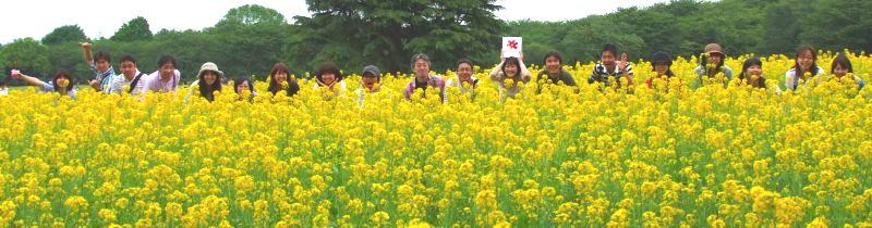 【フォトピクニックレポート】 昭和記念公園 5月20日_c0238457_17395469.jpg