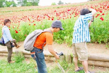 【フォトピクニックレポート】 昭和記念公園 5月20日_c0238457_1785689.jpg