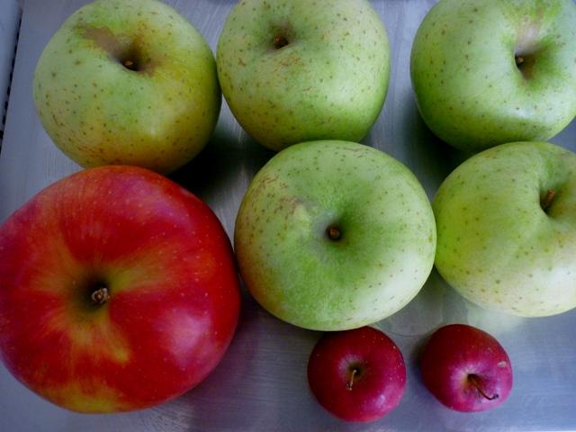 りんご_d0105967_17105065.jpg