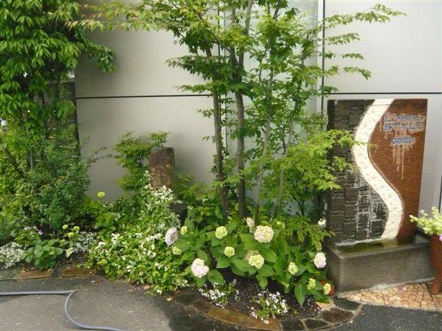 マンションの屋上の小さなお庭_b0137969_18144069.jpg