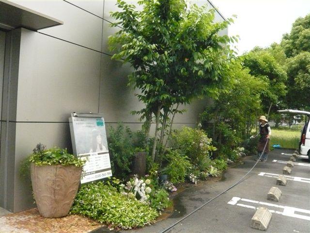 マンションの屋上の小さなお庭_b0137969_18145569.jpg