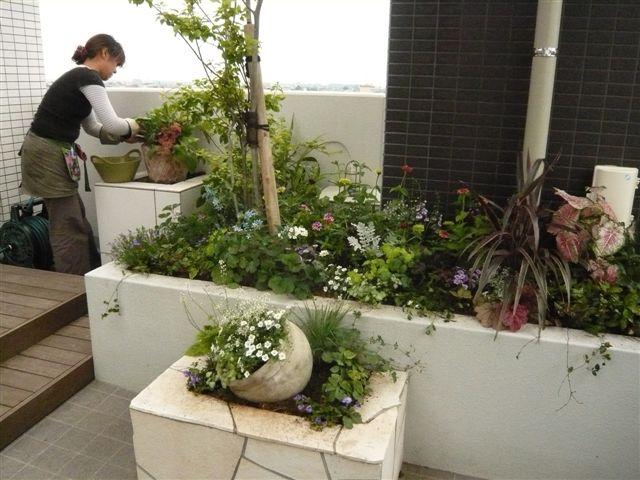 マンションの屋上の小さなお庭_b0137969_1855223.jpg