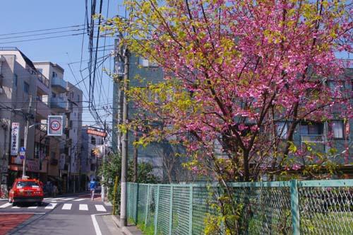 上野・東博で見たこと_f0211178_19532530.jpg