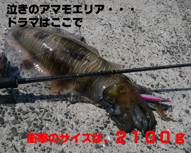 f0183484_2135278.jpg