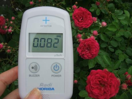放射能測定_a0229594_10212680.jpg