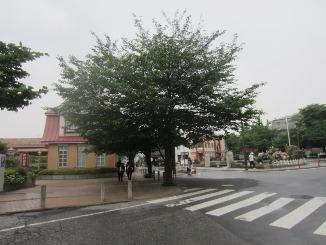 街を散策、新たな発見!_d0091909_11314737.jpg