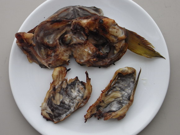クロメヌケを食べてみた 120512_c0237483_6374641.jpg