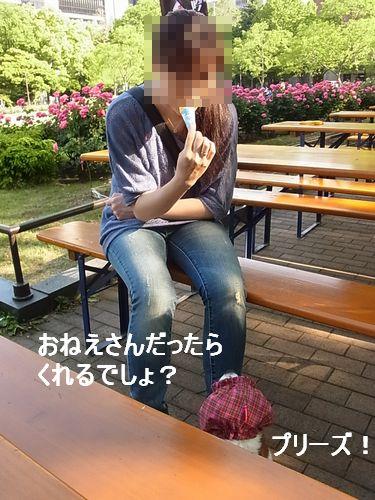 f0214121_22394364.jpg
