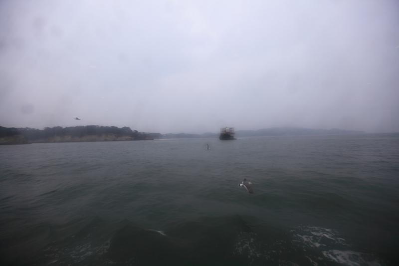 5/18翌朝10時に仙台港へ あいにくの雨、時間調整のため 松島一周の観光船に_a0160581_19204411.jpg