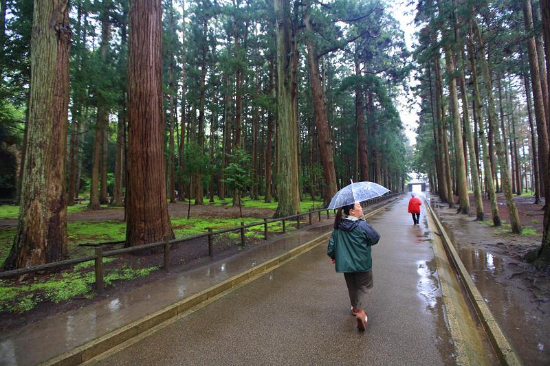 5/18翌朝10時に仙台港へ あいにくの雨、時間調整のため 松島一周の観光船に_a0160581_19311056.jpg