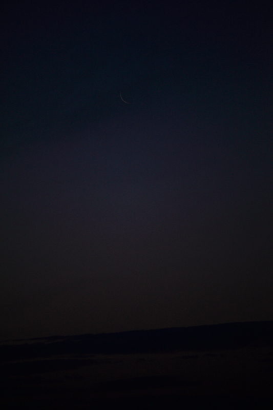 南三陸志津川 俯瞰してみると静かなおだやかな海_a0160581_2114121.jpg