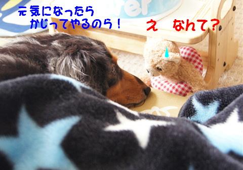f0195891_201306.jpg