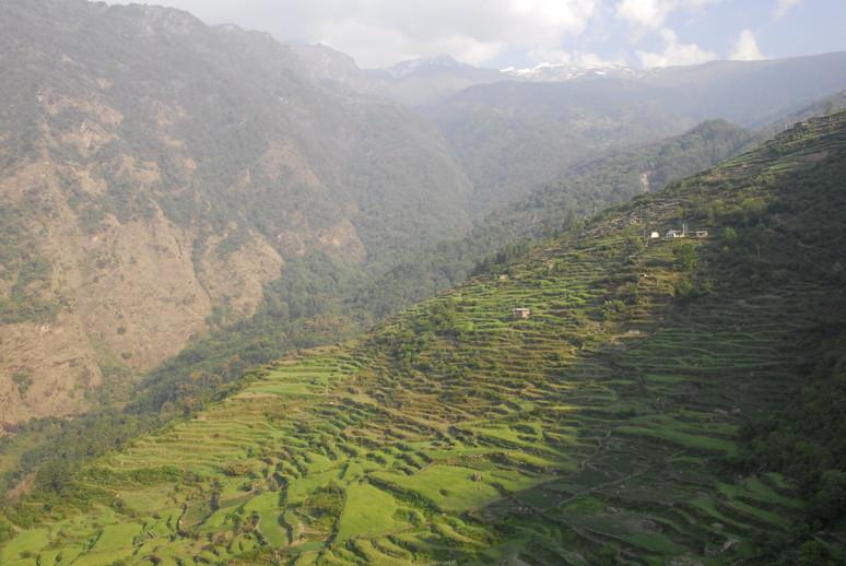 2012年5月 I Love Nepal. ネパールヒマラヤ再訪記(ランタン谷トレッキング)No.1_c0219616_21282043.jpg