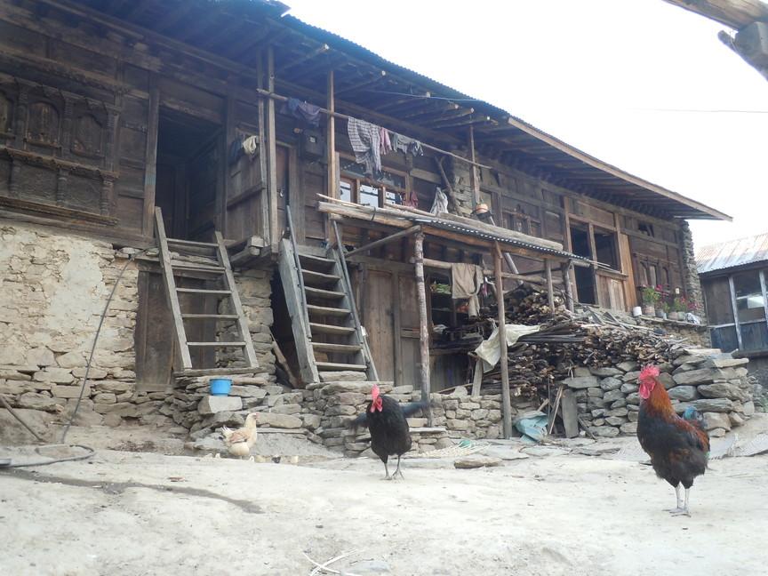 2012年5月 I Love Nepal. ネパールヒマラヤ再訪記(ランタン谷トレッキング)No.1_c0219616_21305134.jpg