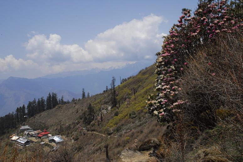 2012年5月 I Love Nepal. ネパールヒマラヤ再訪記(ランタン谷トレッキング)No.1_c0219616_21363999.jpg