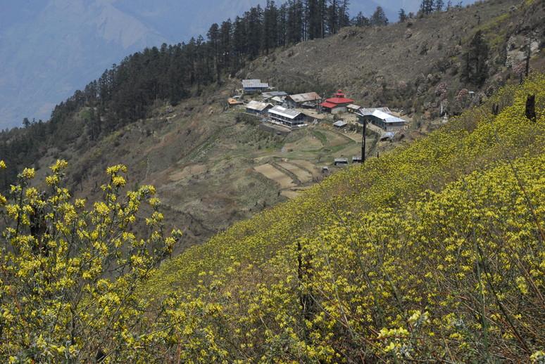 2012年5月 I Love Nepal. ネパールヒマラヤ再訪記(ランタン谷トレッキング)No.1_c0219616_2137086.jpg