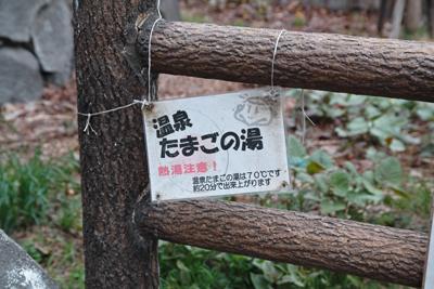 札幌の奥座敷 ~定山渓温泉~_c0223825_1174027.jpg
