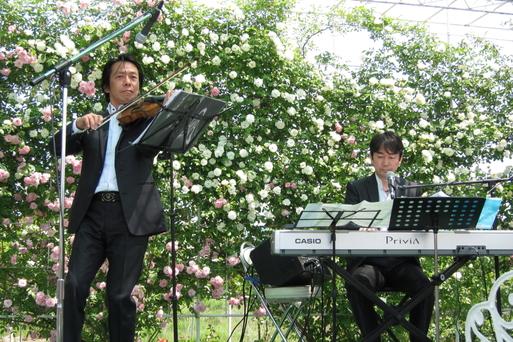 姫路バラ園コンサート♪_a0248129_5322526.jpg