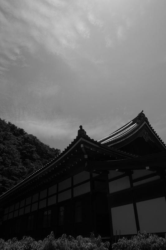 鎌倉 円覚寺_f0050534_843186.jpg