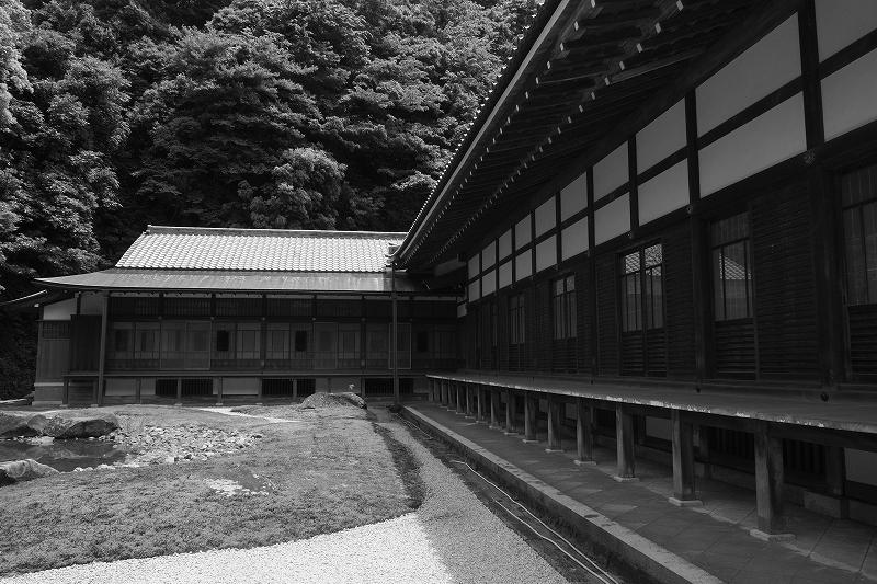 鎌倉 円覚寺_f0050534_843997.jpg