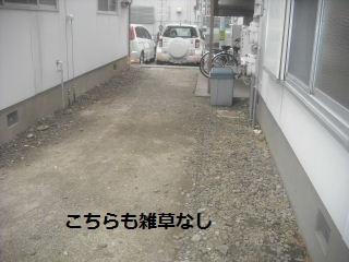 f0031037_21295166.jpg