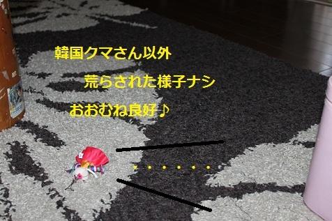 c0206342_1434197.jpg